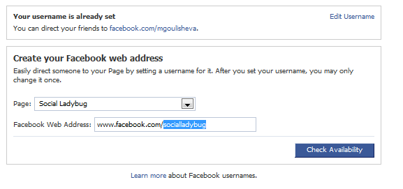 custom-facebook-url-check-availability